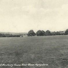 Senior cricket ground.