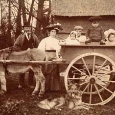 Family with donkey cart