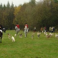 Foxhunt at Bereleigh, November 2004
