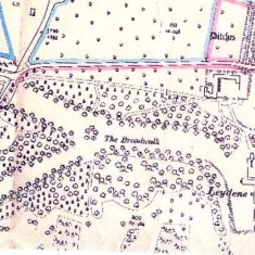 Map of Leydene Estate, pre-war. Work started on the Main House, designed by Mr Jupp FRIBA of London, in the Spring of 1914 and an area north of Leydene Bottom was levelled for the foundations.  The stone came from Belgium, shipped across the channel, then by rail to Havant and finally by lorry to the site.  The bricks were specially made by Rowland's Brick Works. The Peel's moved into the farm house at Coombe Cross to keep an eye on construction.  They stayed at the farm house for ten years.  However, the First World War brought a halt to construction, as the labourers, who were all local, were needed for war work and to expand the armed forces.