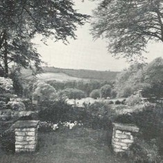 View from the house, 1958