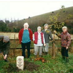 Planting Memorial Oak on Recreation Ground. From L, Frank Wheeler, Anella Parker Martin, Rosemary Ryder, Susan Hull