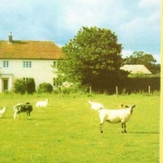 Card promoting Oxenbourne Farm Country Weekend offer.