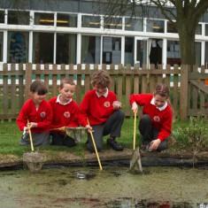 School Pond 2009