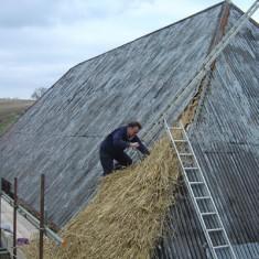 Lyle Morgan thatching barn at Lower Farm.