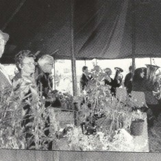 Peter Street at Flower Stall
