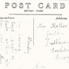 Text of Frogmore postcard, sent to Surbiton.