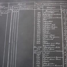 Chart of Allotments to Bonham Carter