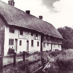 Hockley & Brook Cottages by narrow river and overgrown banks, probably 1930s