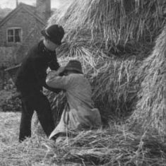 PC with tramp in haystack