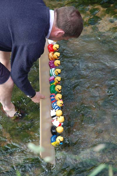 Golden Jubliee celebrations June 2002. Clive Tilbrook lines up the staters in the duck race. | Michael Blakstad