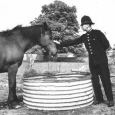 P>C Dennis Thorne with horse