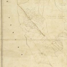 Section of East Meon Tithe Apportionment map 1852 Hen Wood and Court Farm West of EM