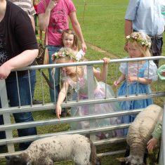 Fairies and lambs