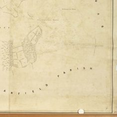 Section of East Meon Tithe Apportionment map 1852  Oxenbourne & Hillhampton Downs
