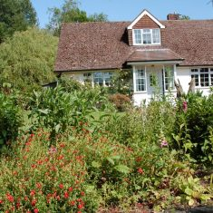 Hazel Rendle's garden from front